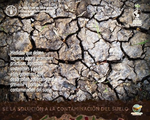 buscar-agua-subterranea-dia-mundial-suelo-2018