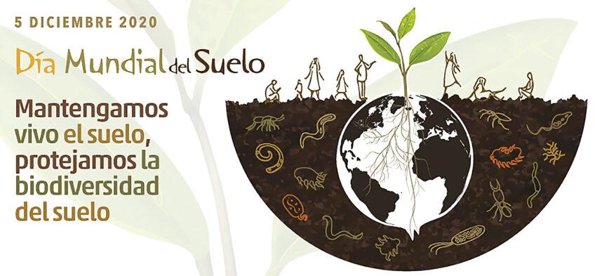 agua-subterranea-dia-mundial-suelo